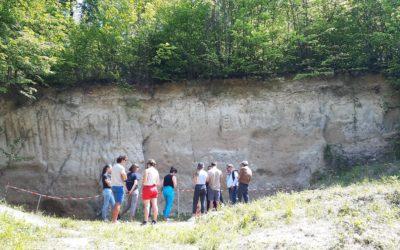 Visite de la Falunière, site géologique remarquable à Grignon
